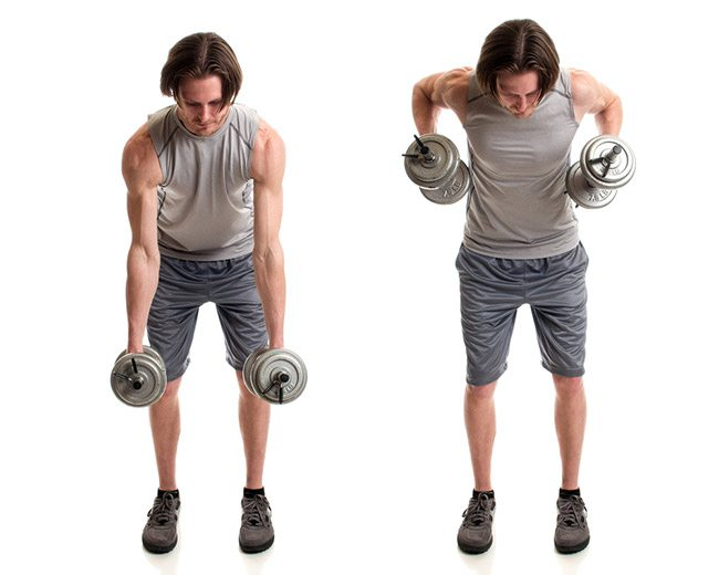 Two-Arm Dumbbell Rows