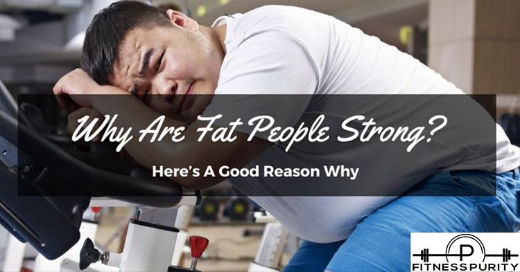 why are fat people strong