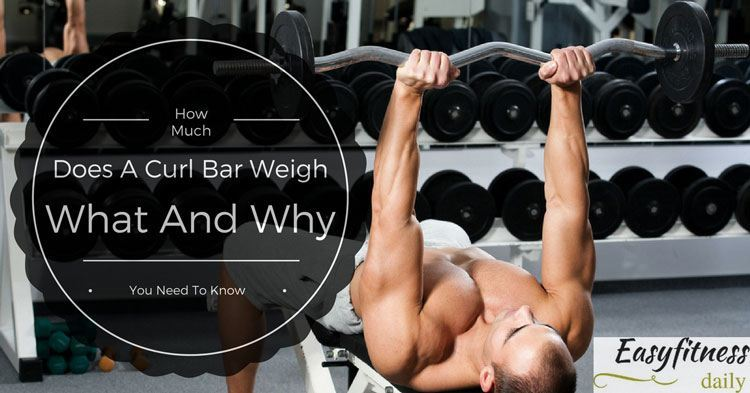 What Does A Bench Press Bar Weigh