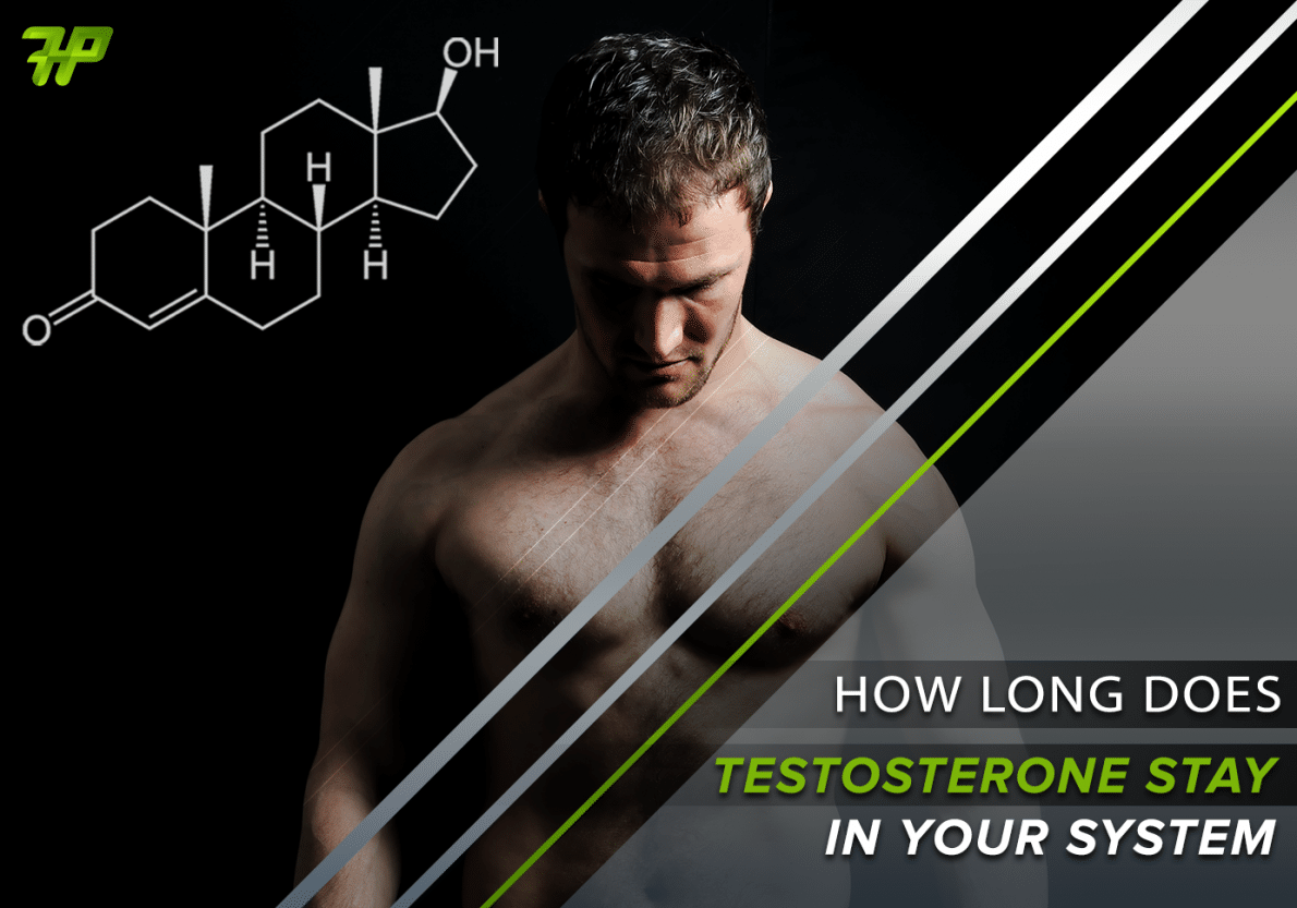 How Long Does Testosterone Stay In Your System: All You Need To Know